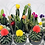Thumbnail: Cactus 01 with Deco Flower
