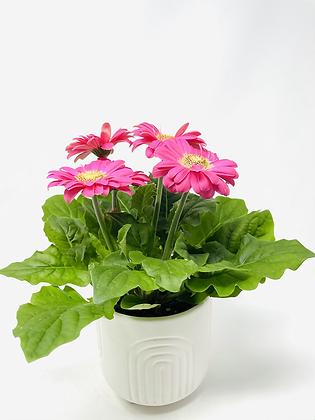 Arc Ceramic with flower 🌸 07