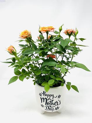 Mom's Day Ceramic w/ Flw 08