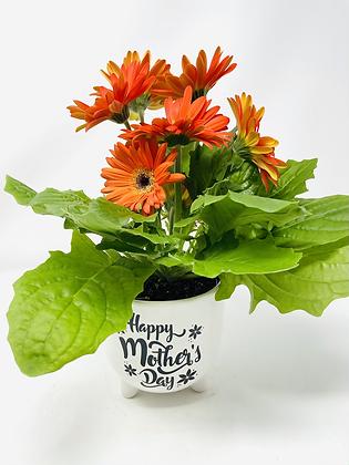 Mom's Day Ceramic w/ Flw 05