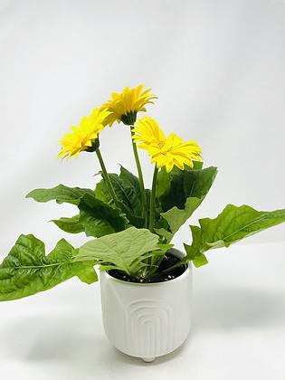 Arc Ceramic with flower  🌸 02