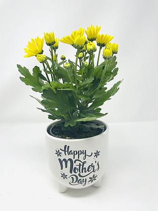 Mom's Day Ceramic w/ Flw 02