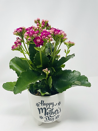 Mom's Day Ceramic w/ Flw 07