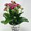 Thumbnail: Mom's Day Ceramic w/ Flw 07