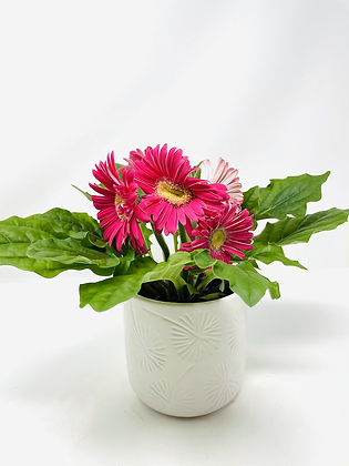 Star ⭐️ ceramic with flower 04