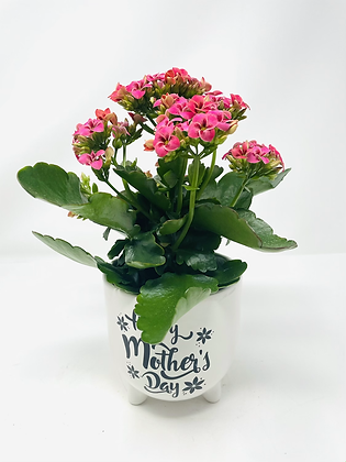 Mom's Day Ceramic w/ Flw 03