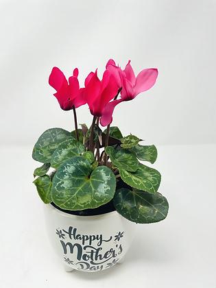 Mom's Day Ceramic w/ Flw 01