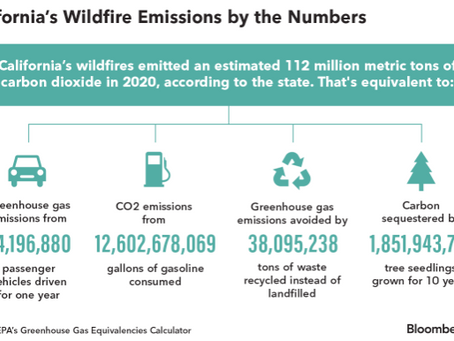 The Impact of wildfires