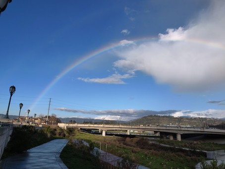 Rainbows amid the doom and gloom...