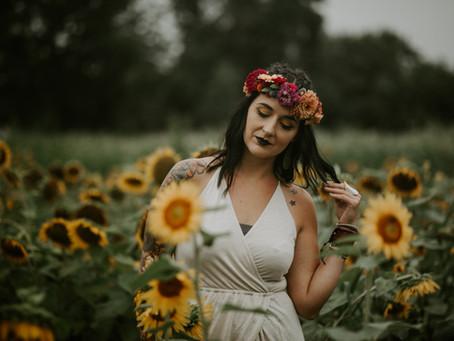 Sunless Sunflowers