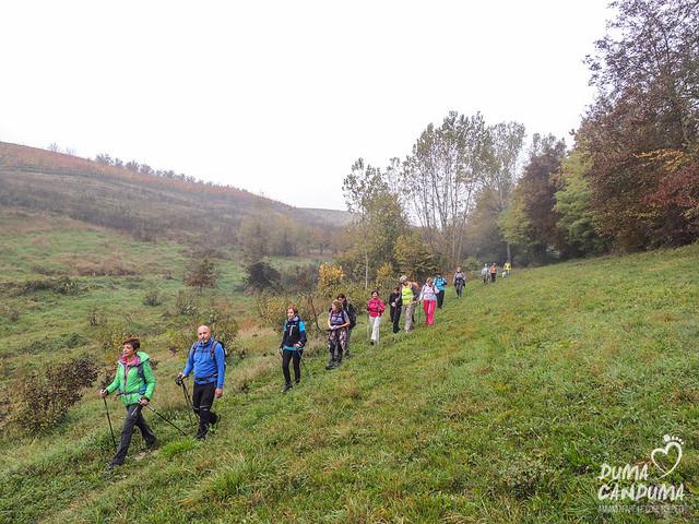Ходьба с палками в поле