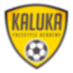 Logo Kaluka Effeito.png