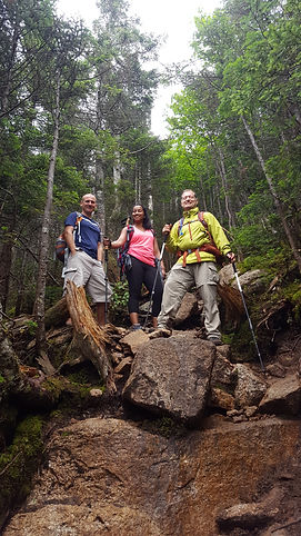 Three people hiking in the forest