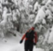 winter off trail trek.jfif