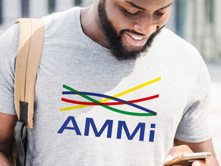 "EXPERTISE FRANCE / UNION EUROPÉENNE - ""AMMI"""