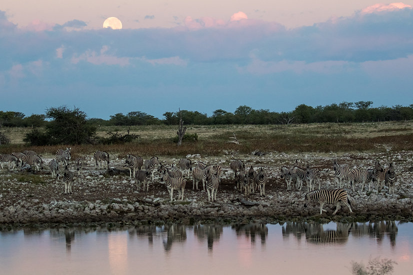 נמיביה - Namibia