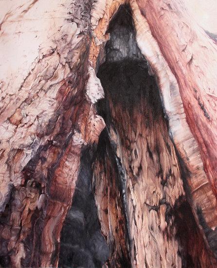 Burnt eucalyptus