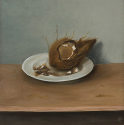 coconut_2019