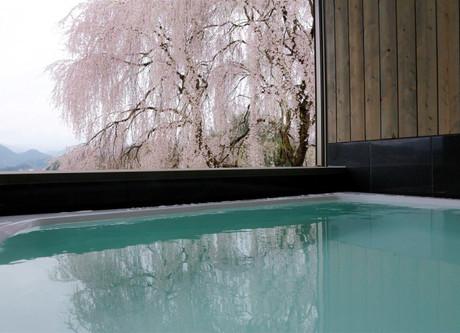 Hagi-Private-Onsen-with-Sakura-768x512.jpeg