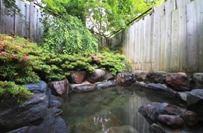 Hotel-Natural-Garden-Nikko.jpeg