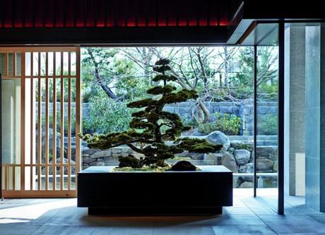 Ritz-Carlton-Bonsai-768x512.jpeg