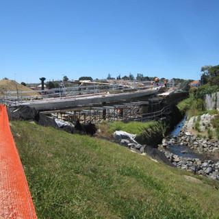 Waterview Foot Bridge