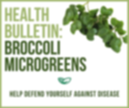 Health Bulletin Broccoli Microgreens.png