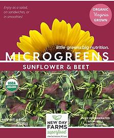 Sunflower & Beet.jpg
