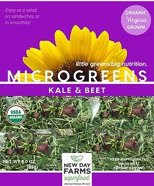Kale & Beet.jpg