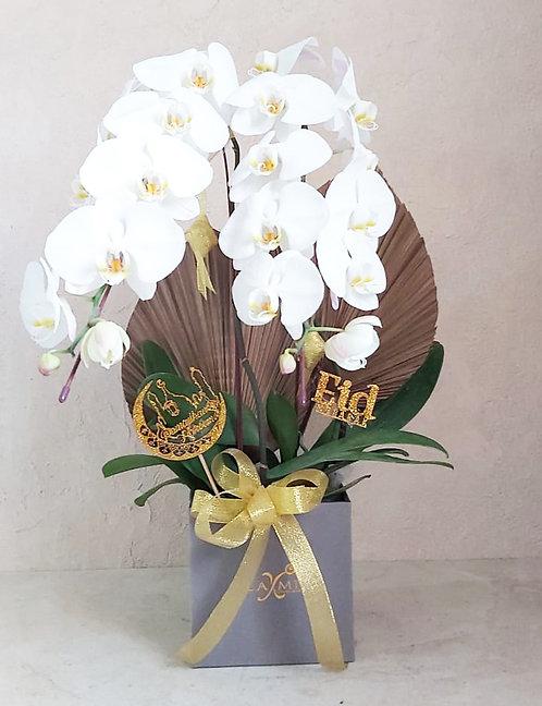 Bunga Rangkaian FF 2104