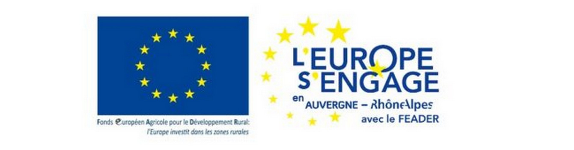 Logo_pageeurope_feader-1-650x170.jpg