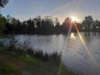 coucher de soleil sur l'étang.jpg