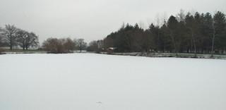 étang gelé et enneigé
