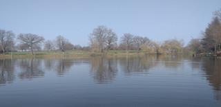 vue sur l'étang.jpg
