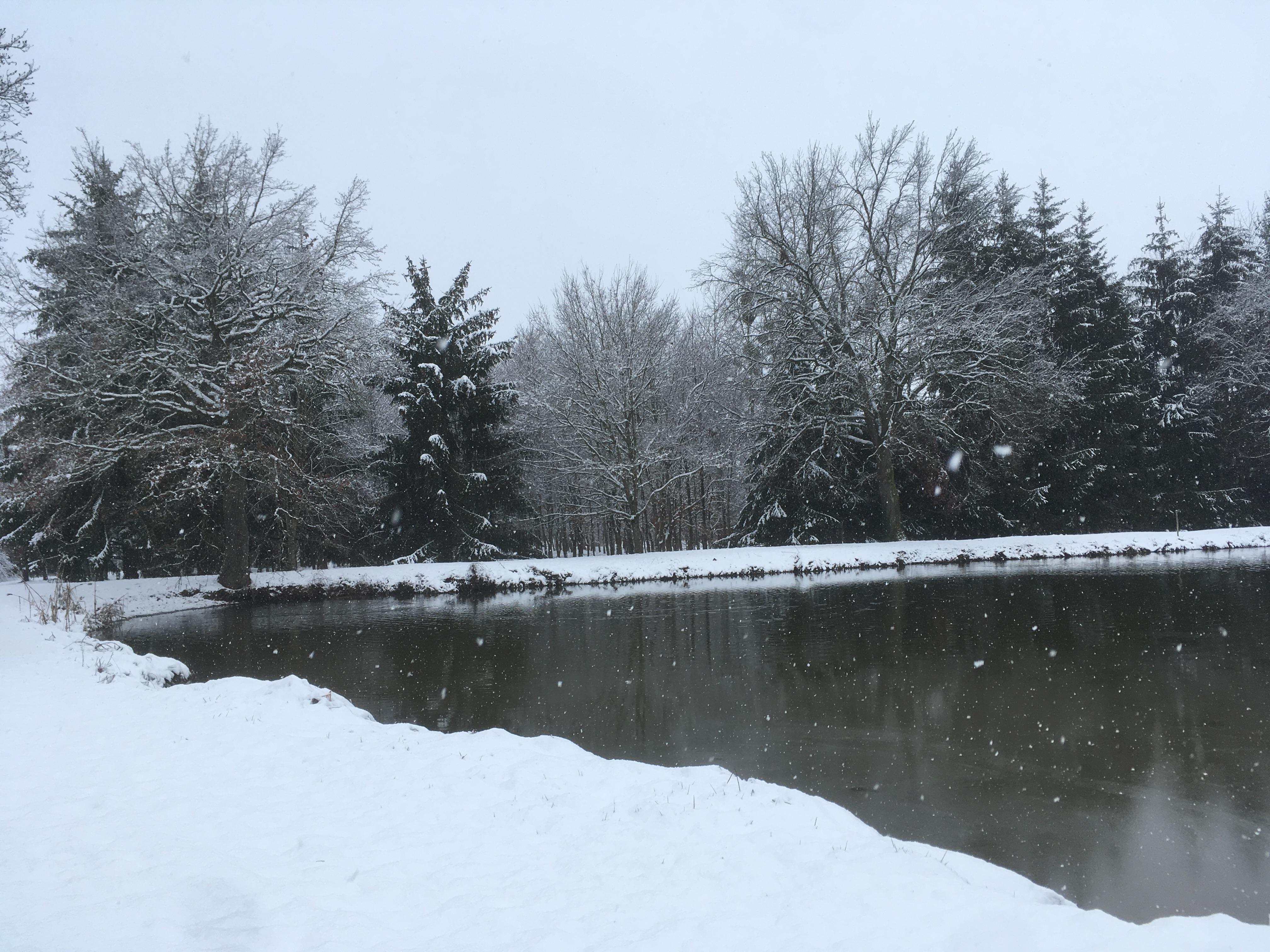 hiver dans l'allier