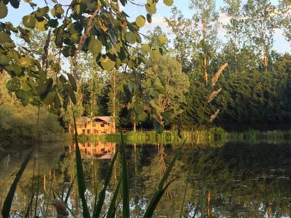Entre les roseaux-Domaine des Faverots