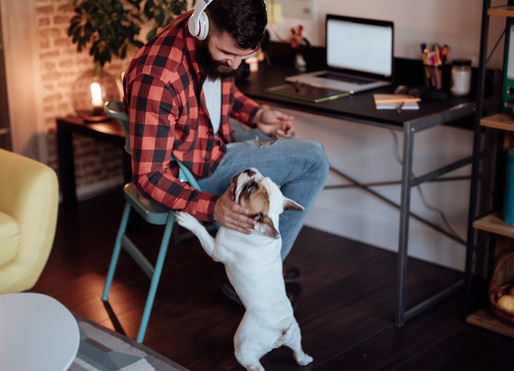 Working from home? How to be productive?