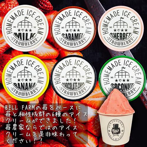 いちごのアイスクリームセット 各1個 6種