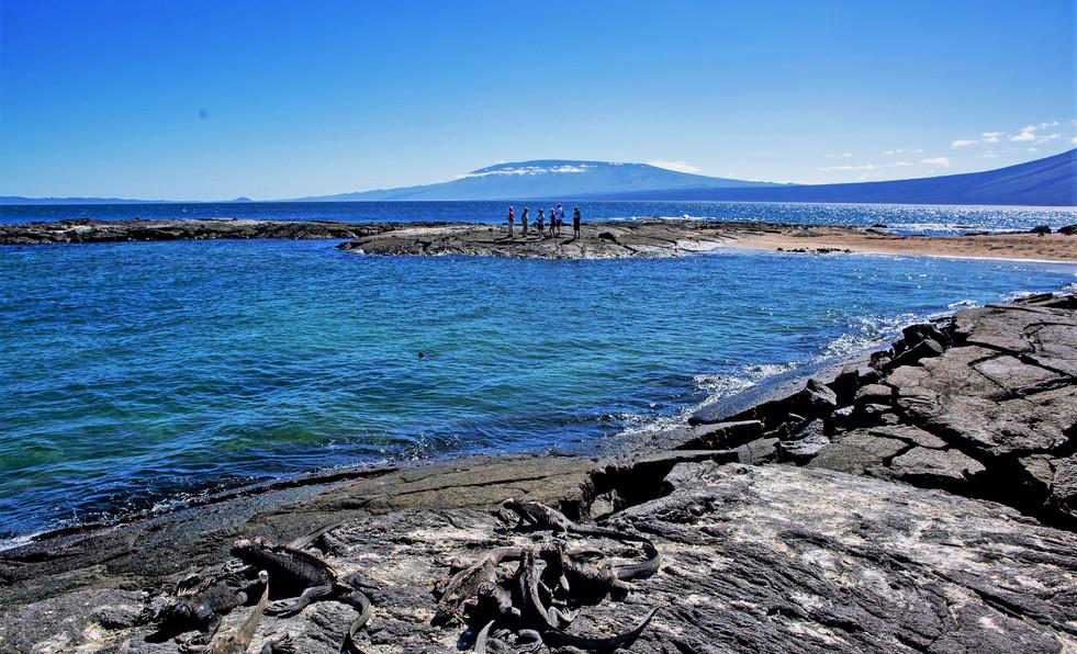 Isabela volcanoes.jpg