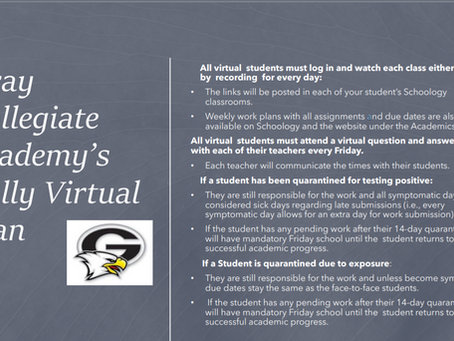 Fully Virtual Plan for Students
