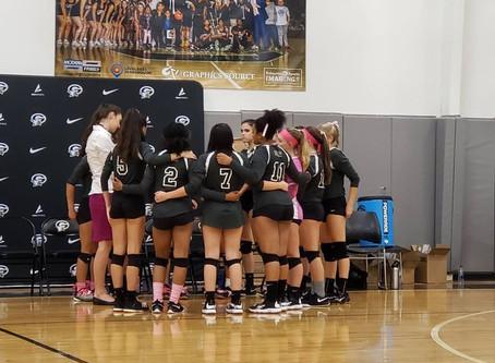 Lady War Eagle Volleyball