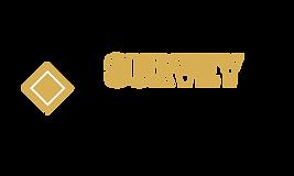 SurveyExample-logo-png.png
