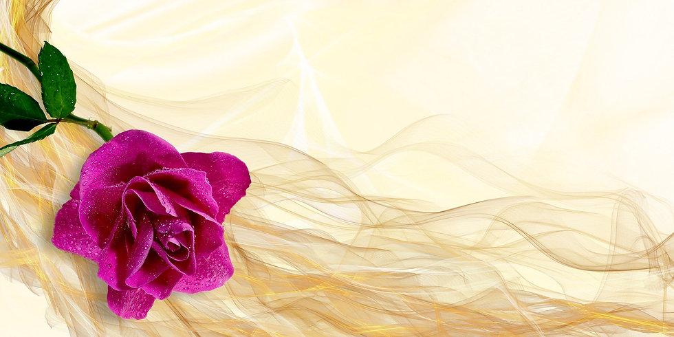 rose-1400953_1920.jpg