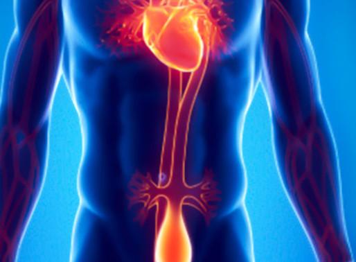 Quais os Sintomas do Aneurisma de Aorta?