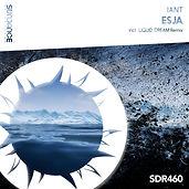 SDR460.jpg