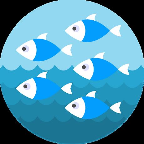 absoluteaquatics_learn_to_swim_pre_prep.