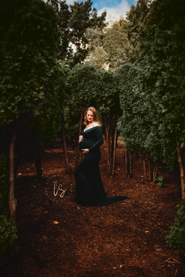 Colonie NY Maternity Photographer.png