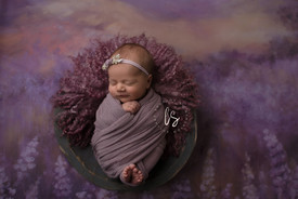 Ballston spa newborn photos.jpg