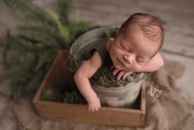newborn photos canajoharie.jpg