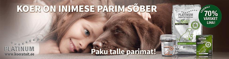 Platinum_koeratoit_bänner.jpg